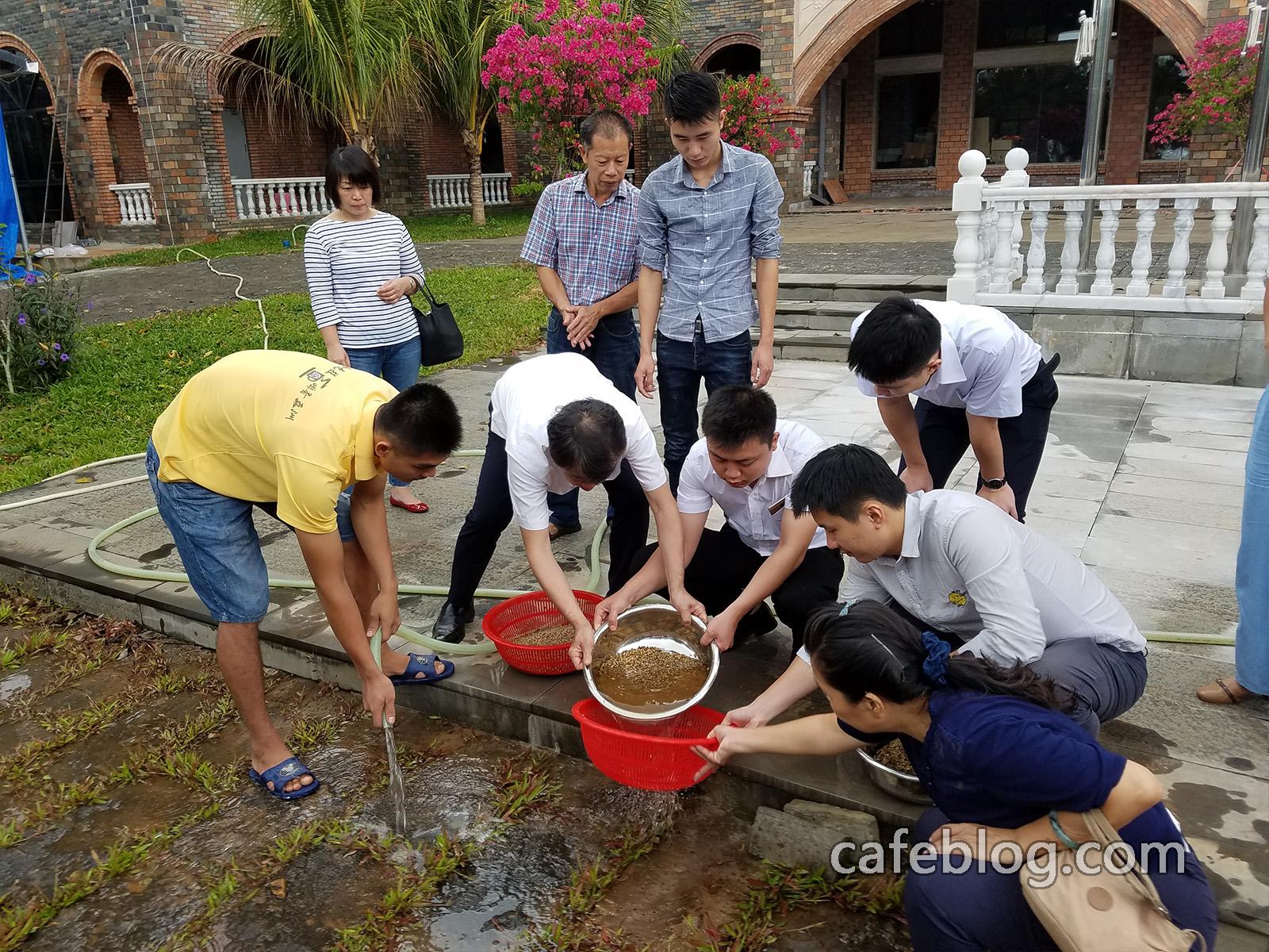 尝试日本烘焙师们的洗咖啡生豆方法和洗豆后的干燥方法以及洗豆后的烘焙方法